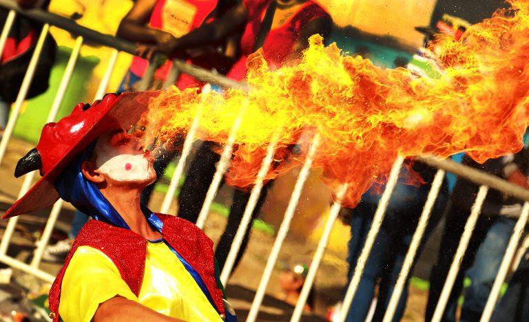 Hacedores del Carnaval Portafolio de Estímulos